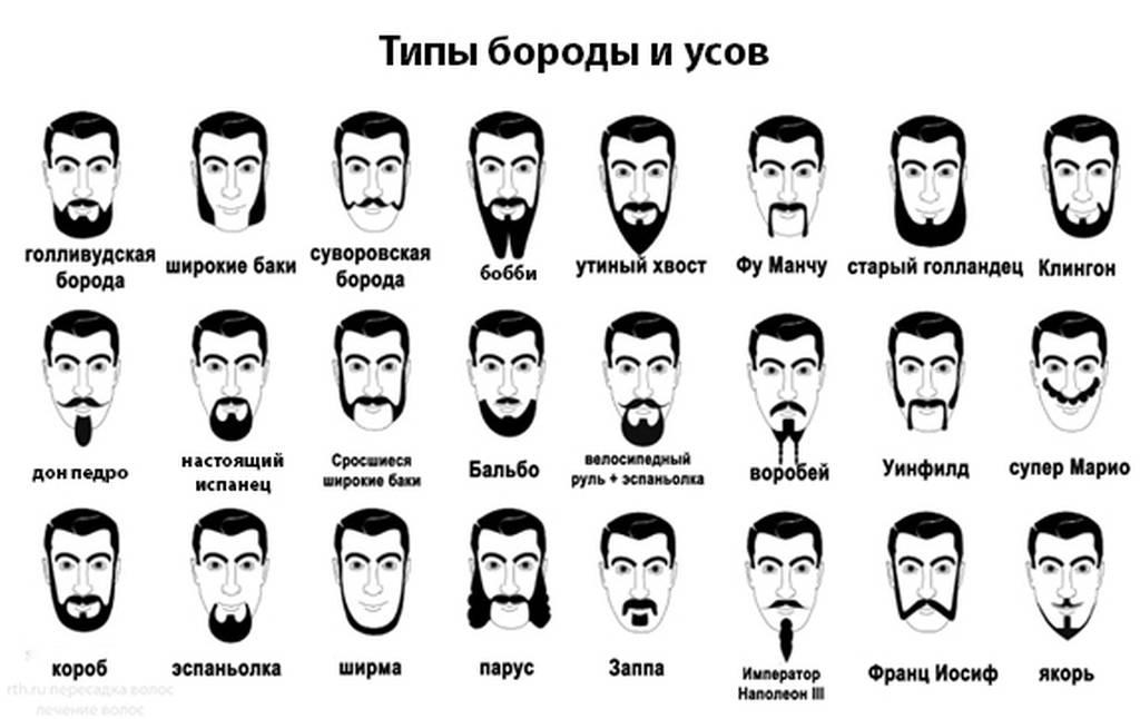 Различные типы усов