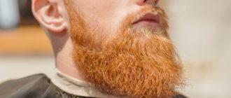 ухоженная рыжая борода