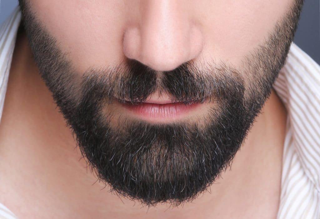красивая борода