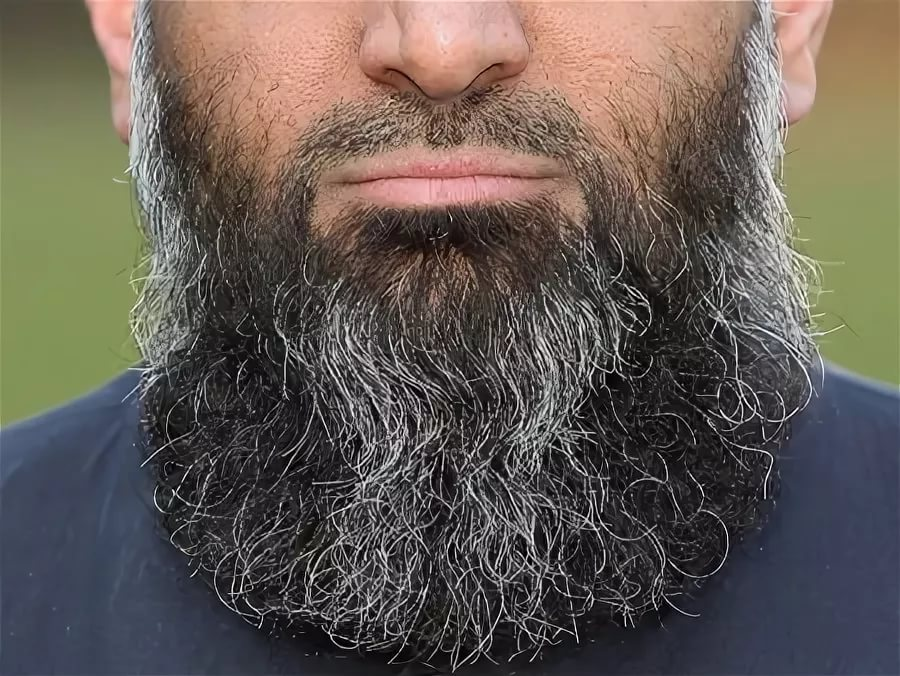 борода чеченца