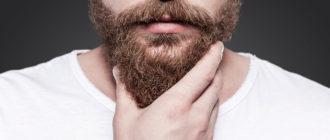 Борода окладистая