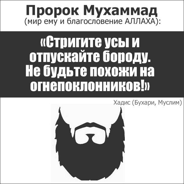 Хадисы о бороде